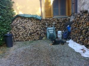 Holz aufgeraeumt