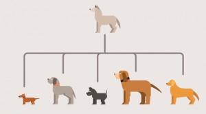 Natuerliche Hundezucht
