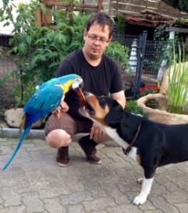 Papagei und Sennenhund