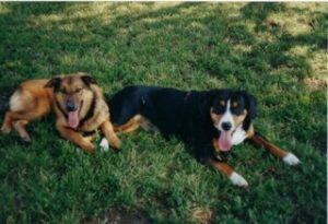 Cindy u. Valerie Jun 2002