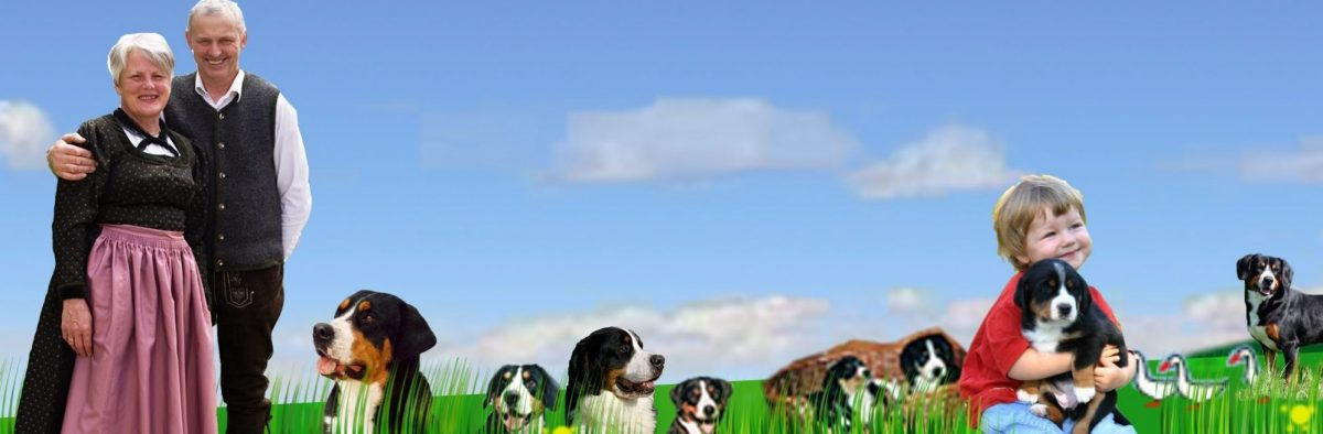 Gretes Sennenhunde Blog
