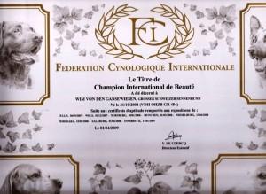 int-champion