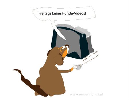 Der Spezial-Wochenende-Hunde-Tarif