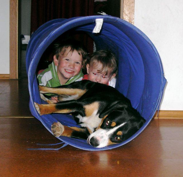 Appenzeller Sennenhund Archive - Seite 3 von 4 - Gretes ...