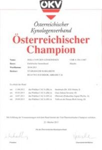 Österreichischer Champion