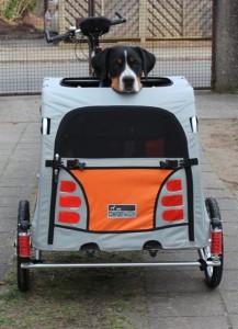 Hundeanhänger, Fahrradanhänger