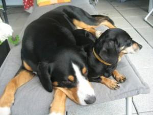 Savino und Lissy