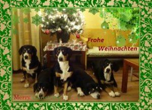 entlinest-kerstmis-dts